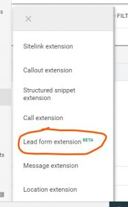 Google Lead form extension step-4